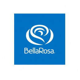 BellaRosa & Roseconnection